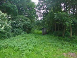 DIXI Klo im Wald