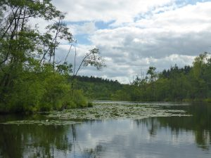 Kanal zwischen Gobenow und Labussee