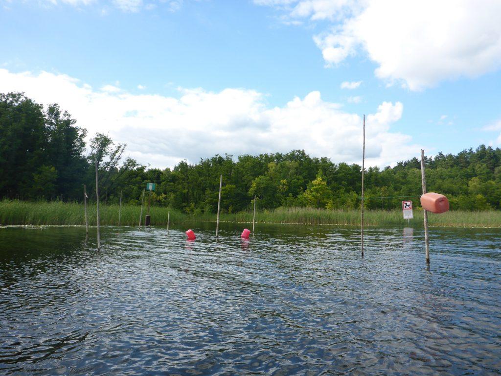Fischreusen am Kanal Dollbek