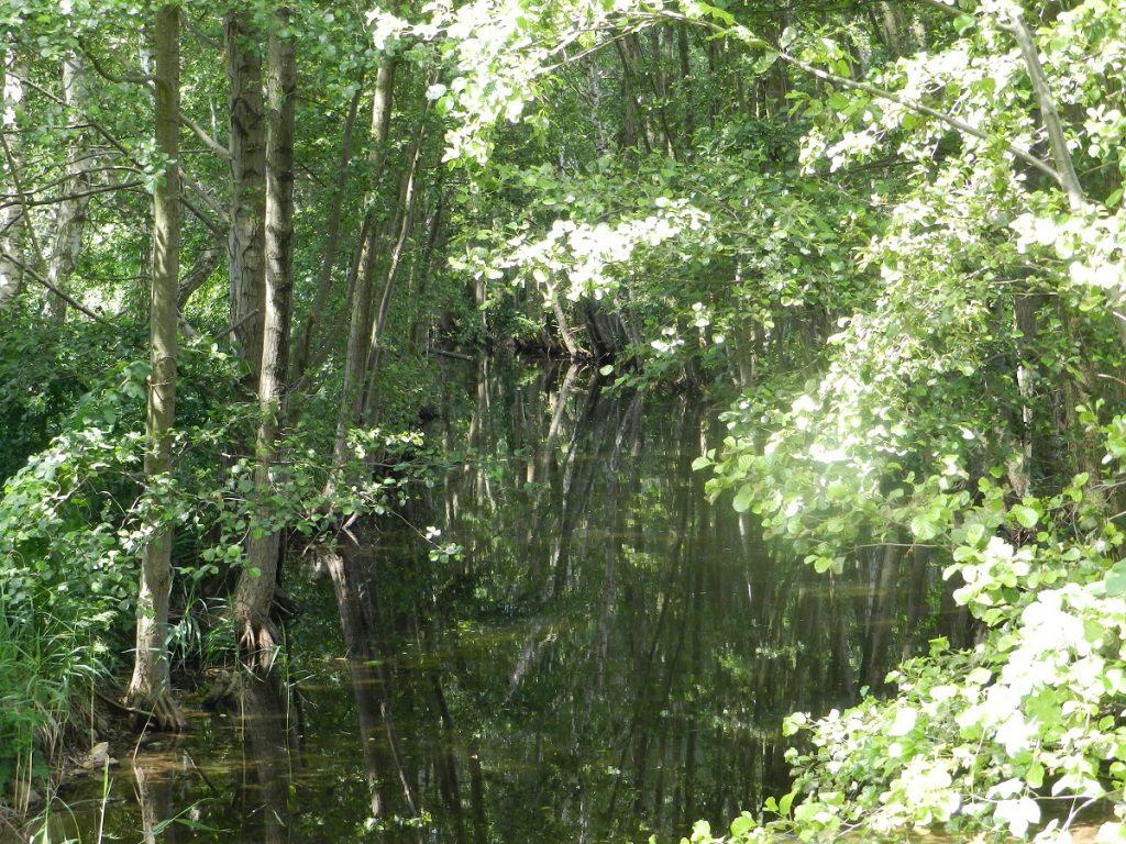 Brücke Havel bei Granzin
