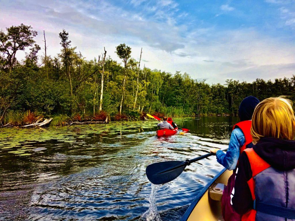 Auf dem Bild befinden sich zwei Paddelboote mit Erwachsenen und Kinder in einer urwaldähnlichen Wasserlandschaft.